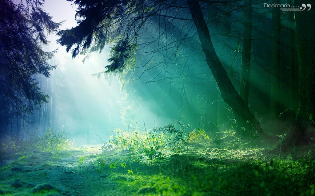 Wonderland Background ...