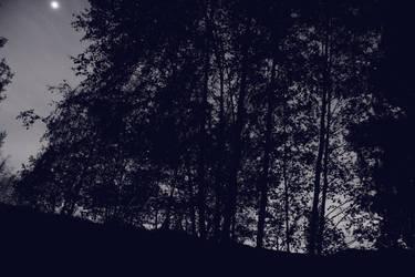 Night0006 by jodroboxes