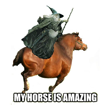 Y Horse Is Amazing My Horse Is Amazing by...