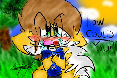 ~.: How Could You?! :.~