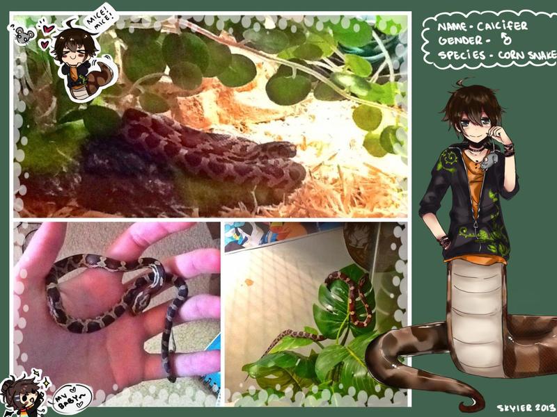 ASDFGHJKLAS MY BBY!// SCREECHES by Skyler-chan498