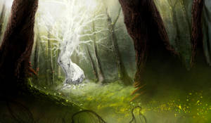 Fae forest