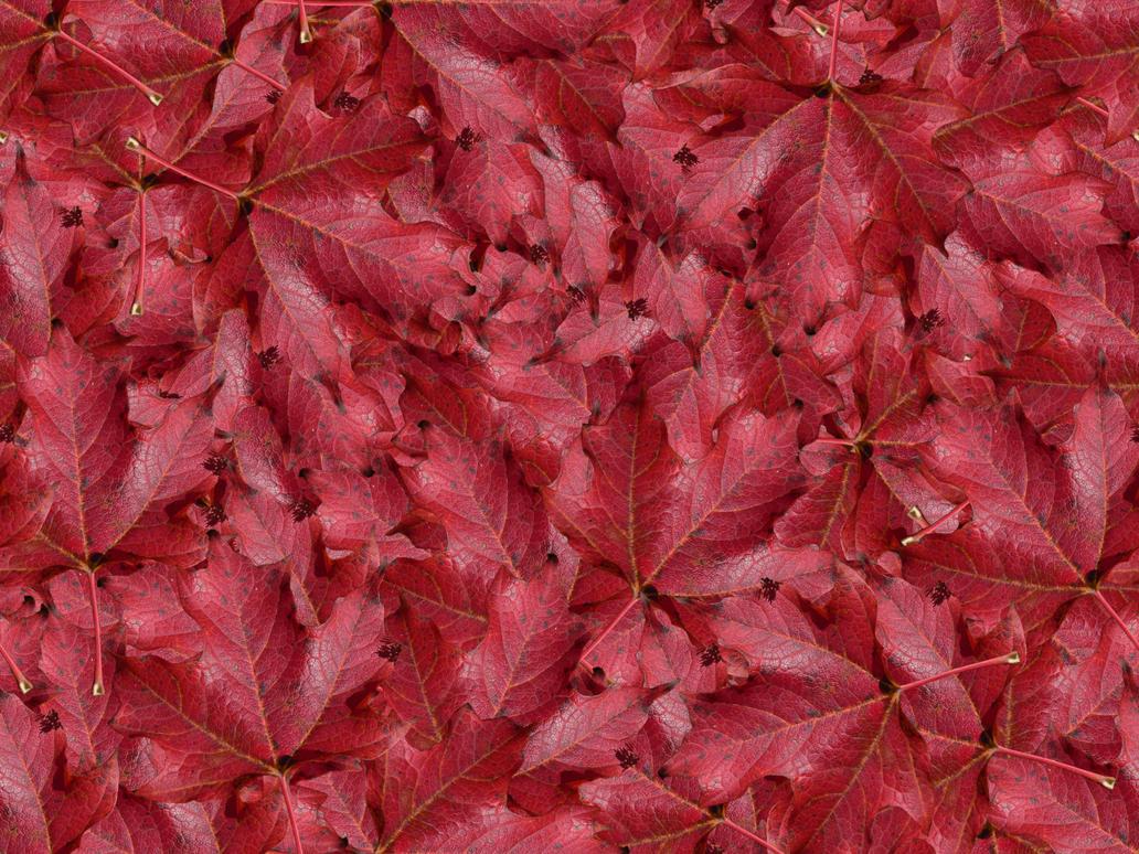 Seamless Fall Leaves by lylejk