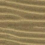 Dune by lylejk