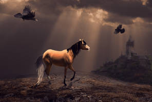 .:ALL THE KING'S HORSES:. by trappedpigeon