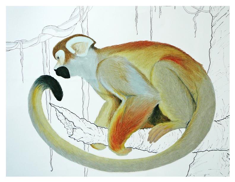 Monkey Business by ObsidianReaper