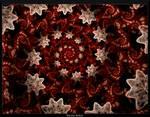 Starry Starry Spiral