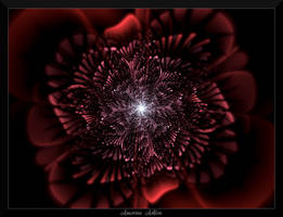 77F4-Red Carnation by AmorinaAshton