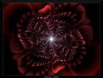 77F4-Red Carnation