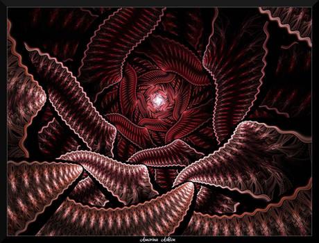 77U4-The Hidden rose