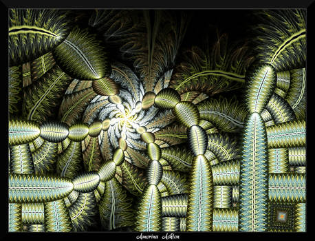 78O4-The Cactus Forest