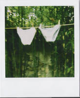 culottes. by moumine-polaroid