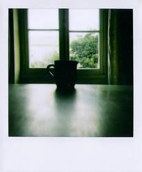 contre jour. by moumine-polaroid