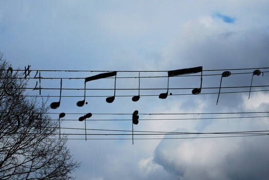 Musical Wires