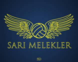 SARI MELEKLER by shady06