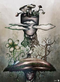 My favorite mushroom