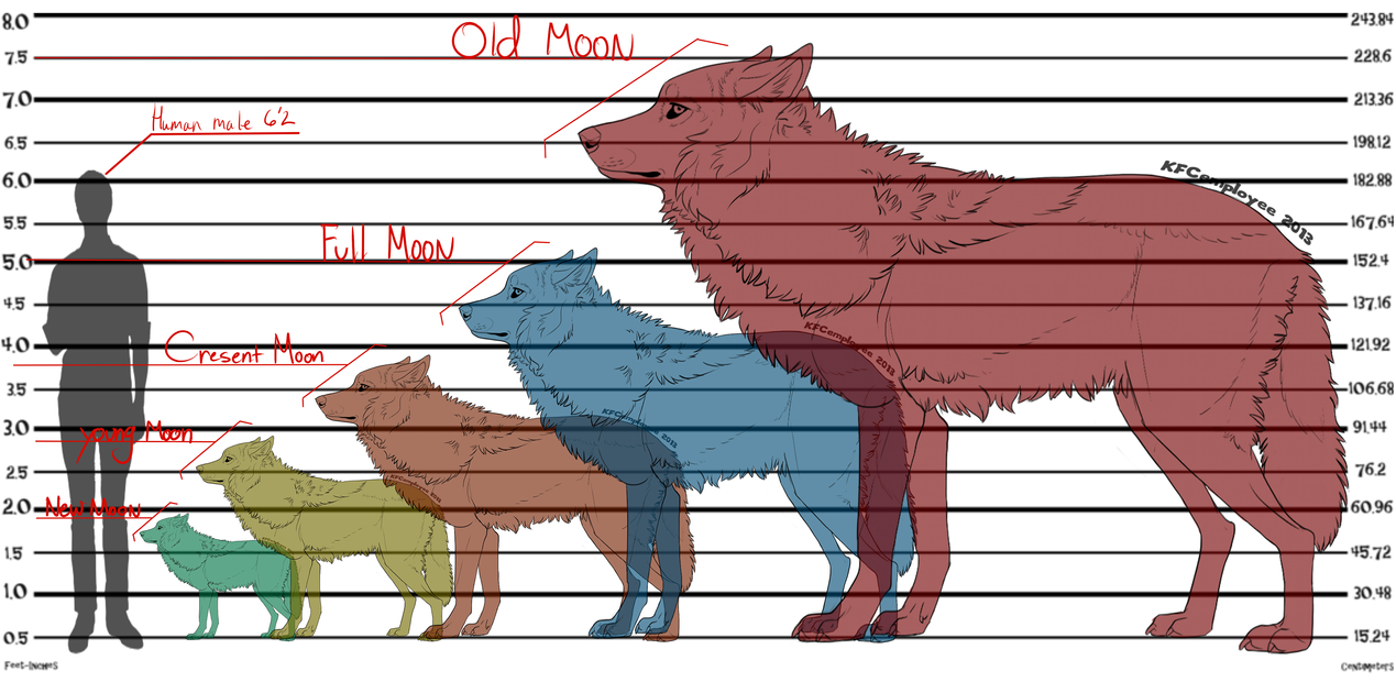 Hybrids Werewolf_hight_chat___hellvampirescrypts____by_twintigerpaw-d9sc57m
