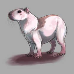 Critternook. Capybara MYO.
