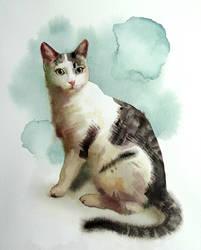 Kira's portrait by claratessier