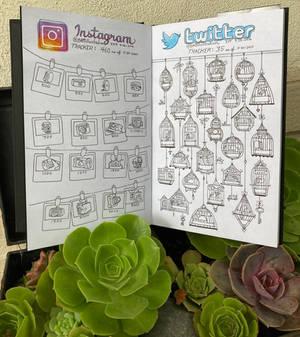 Social Media Follower Tracker