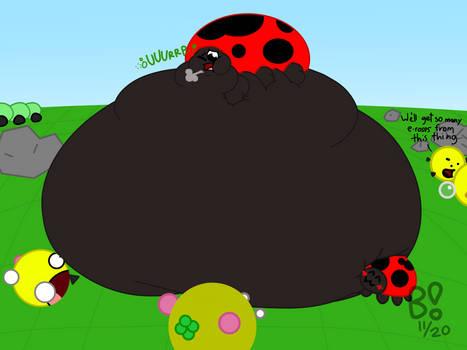 massive massive ladybug