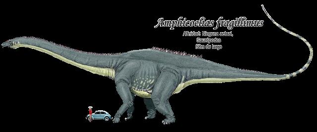 Amphicoelias Fragillimus