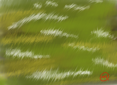 Frost Grass Test by ZMasashi