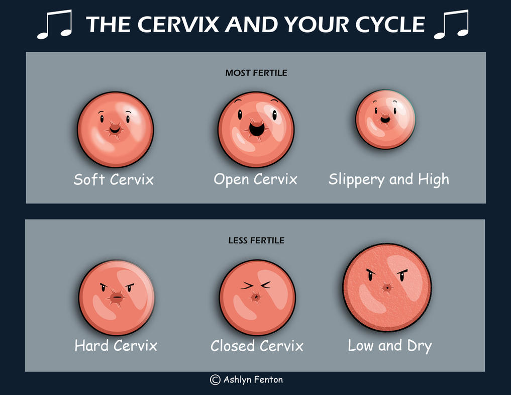 Cervix Song By Legendoftheuterus On Deviantart