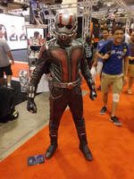 Ant-Man by Neville6000