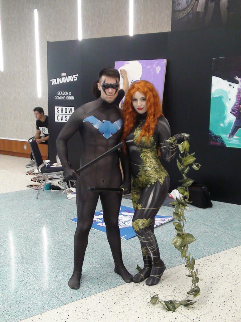 Nightwing And Ivy by Neville6000
