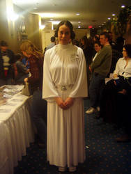 Princess Leia II by Neville6000