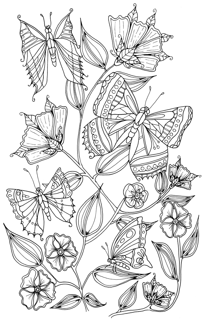 caterpillars and butterflies coloring pages | Butterflies by WelshPixie on DeviantArt