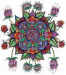 Finished Colouring - Floral Mandala