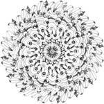 Krita Flower
