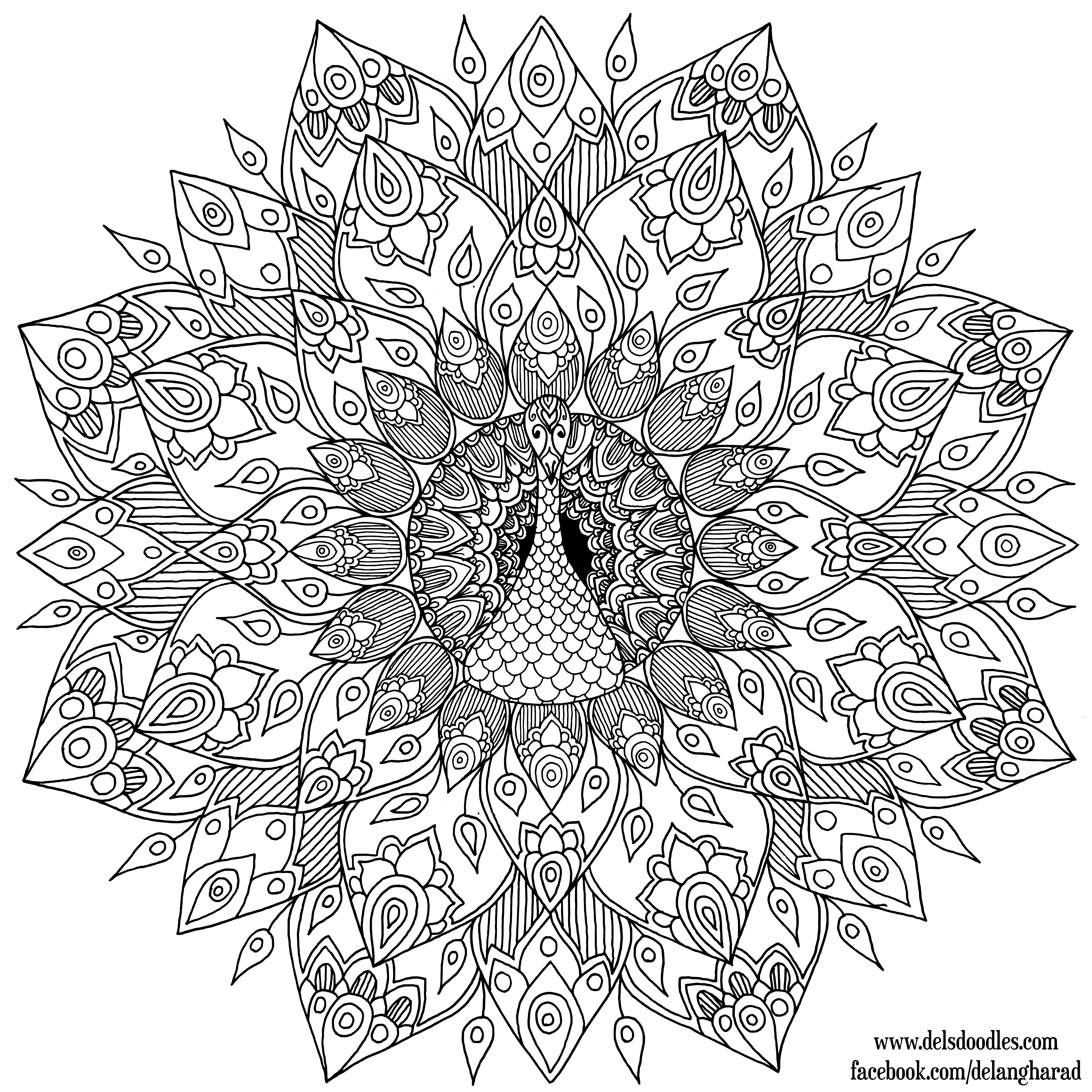 Hand-Drawn Peacock Mandala Colouring Page by WelshPixie on ...