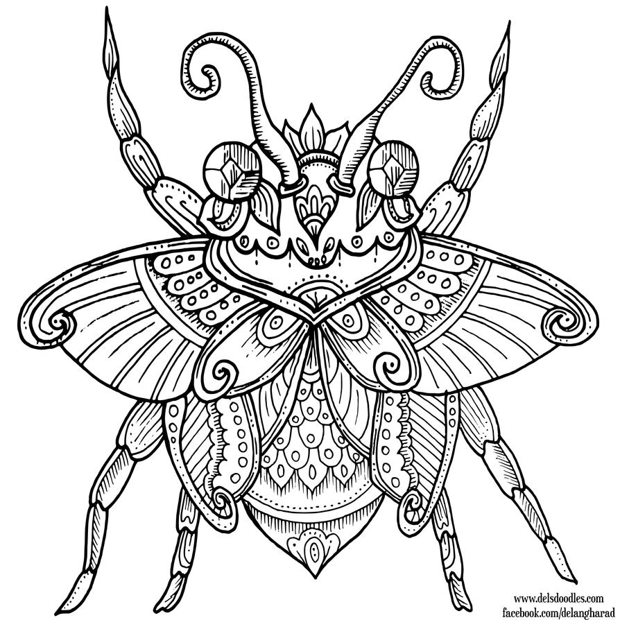 Beetle By WelshPixie On DeviantArt