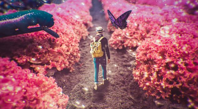 Photomerge - Pink