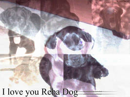 Love you Reba Dog