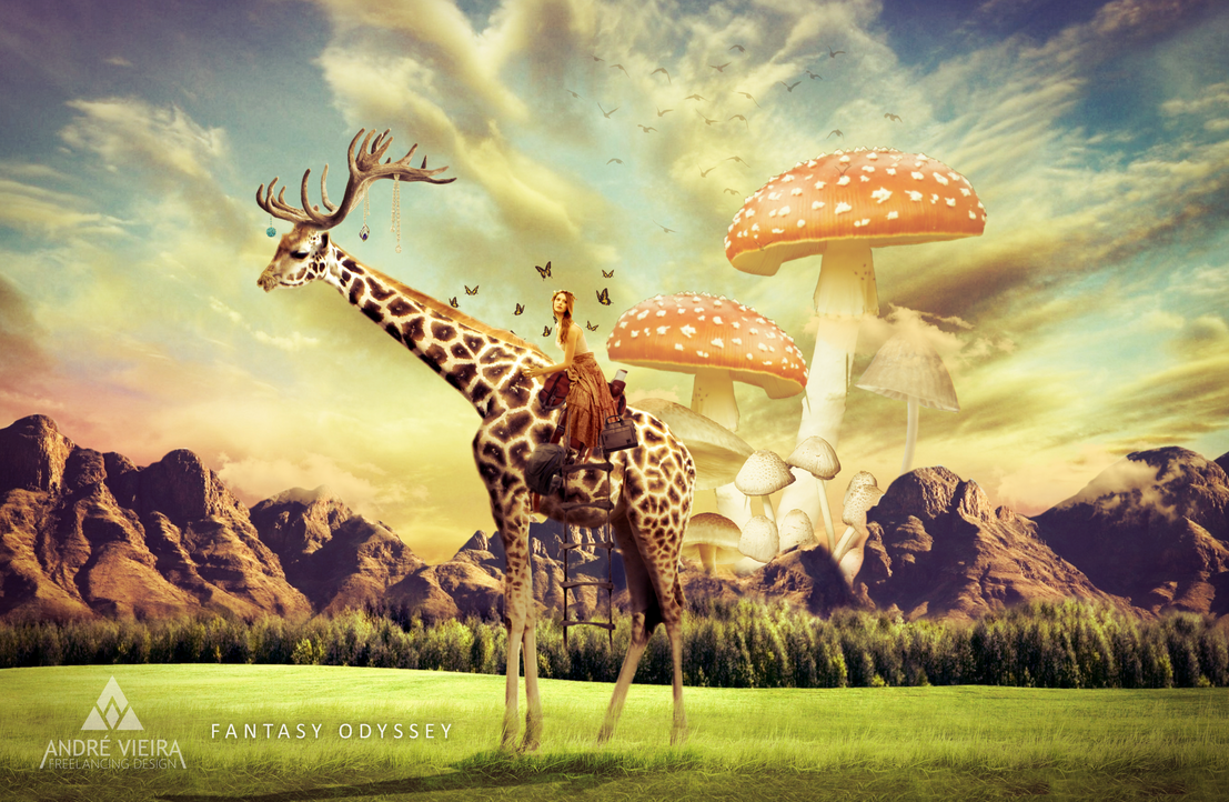 Fantasy Odyssey by AndrewScrolls
