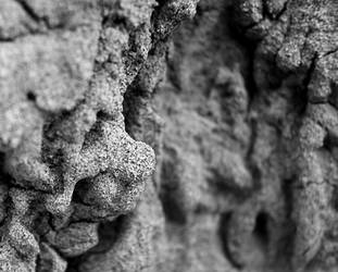 Sandstone by kop4