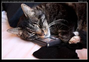 Sleepy Cat by rammsteinfairy