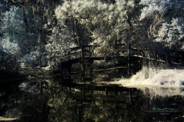 Bridge in the park by WatchTower513