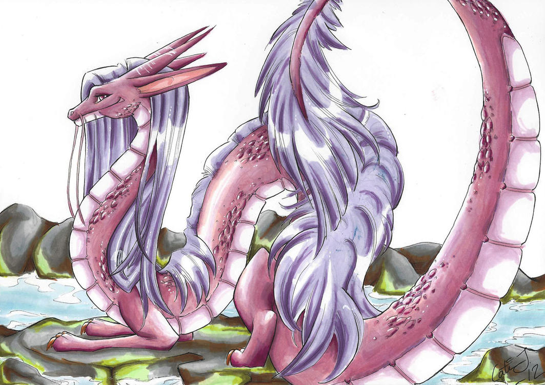 Pink Dragon By KattCattis On DeviantArt
