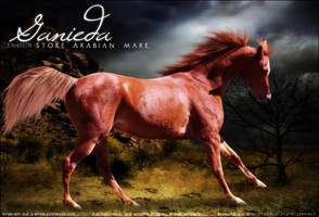 Ganieda by Impressive-Instant