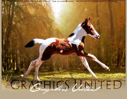 Graphics United by Impressive-Instant