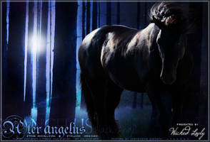 Ater Angelus by Impressive-Instant
