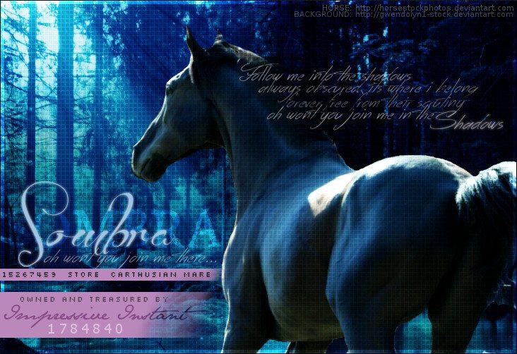 Sombra by Impressive-Instant