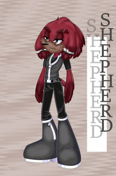 Christmas Present 2020: Shepherd the Echidna