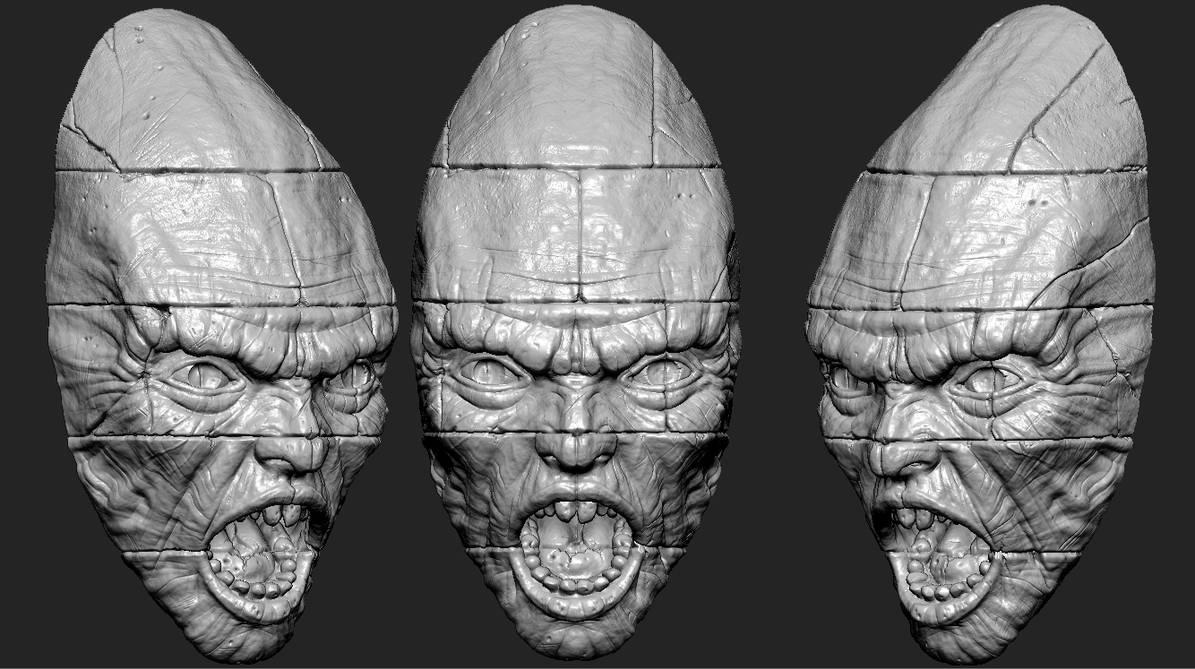 head_sculpte