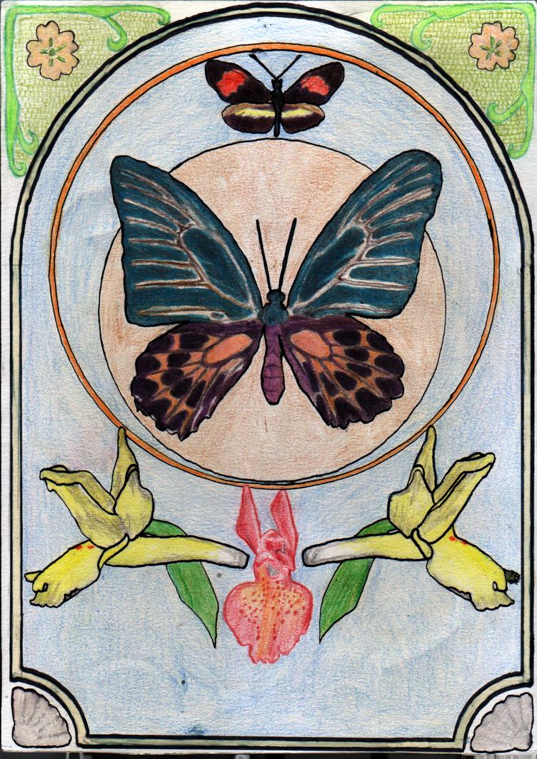 Papillon by cavalTaureau